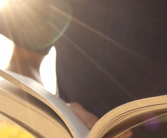 Sunlight shines on person reading book.