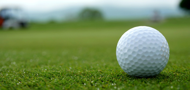 Don Shaw Golf Fundraiser