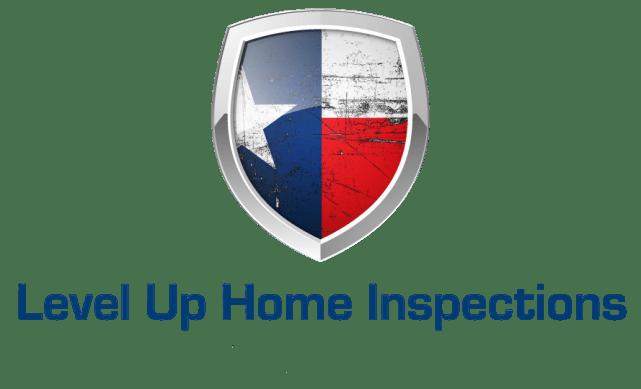 LEVEL_UP_TX_flag-removebg
