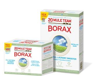 Termite Control - Borax