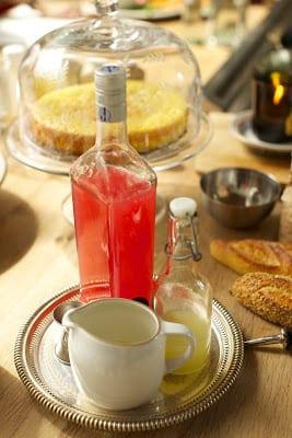 Rhubarb Fizz Cocktail Recipe