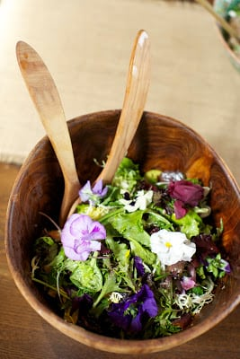"""In the Veggie Kitchen"" Easter Brunch"