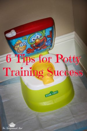 6 Tips for Potty Training Success