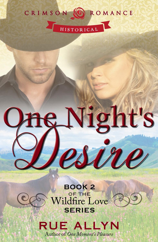 One Night's Desire by Rue Allyn