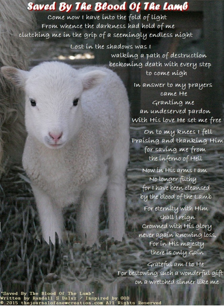"""""""Saved By The Blood Of The Lamb"""" by Randall S Daluz"""