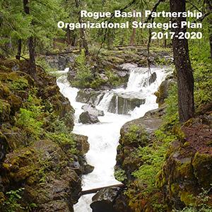 RBP's Strategic Plan (2017-2020)