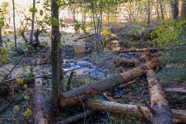 RRWC Removes Salt Creek Barriers