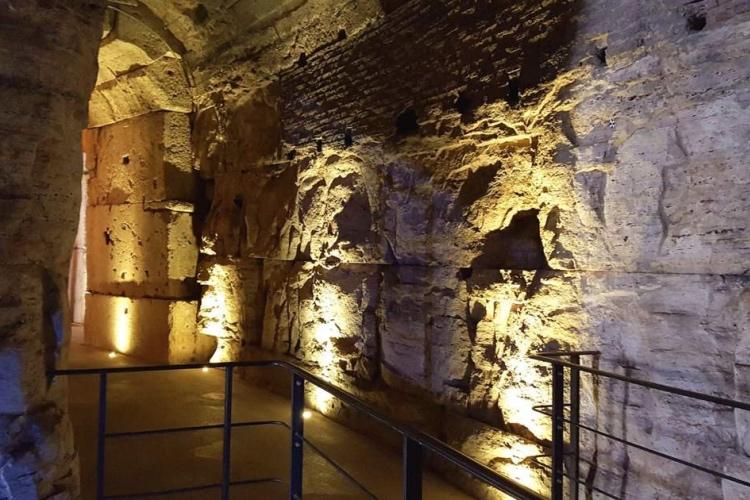 🏆 Colosseum Underground Tour with Arena, Palatine Hill & Roman Forum