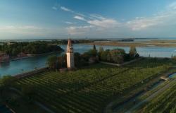 Venissa - Burano (Venice Lagoon) 🏆