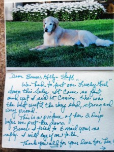 Luck the dog passed away