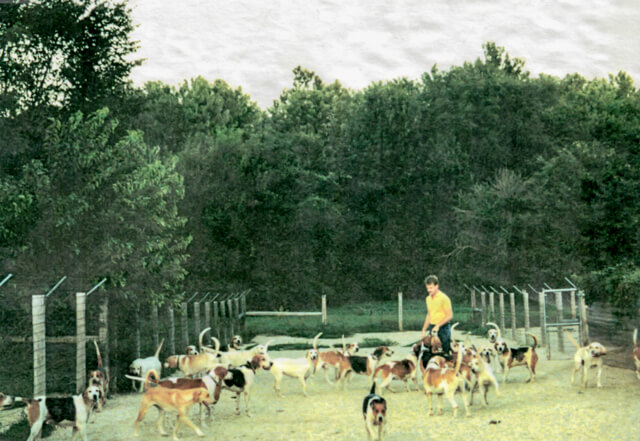 Tom with Fox Hounds