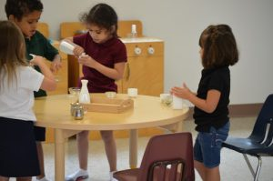 Preschool students work together on a practical life lesson.