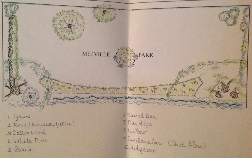 proposed Landscape Design for Melville Park October 1989 by Richard Stott Anderson