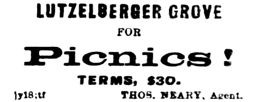 LUTZELBERGER GROVE FOR Picnics! TERMS, $30. THOS. NEARY, Agent.