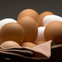 Eggs and Wild Game, Shop With The Doc, photo of eggs