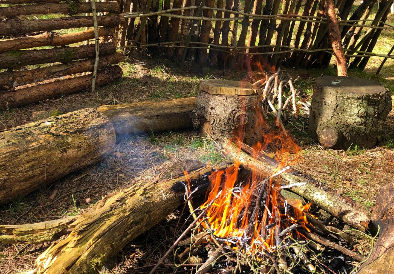 Campfire and wood windbreak