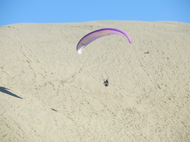 Flying is a popular activity on windy days