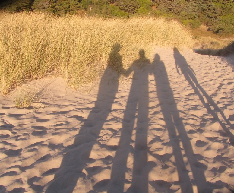 The Sun is setting on our adventures in Newport, Oregon. We take one last trip to the beach, this time at the state park under the Yaquina Bay Bridge. This blog is a Dune Blog Dedicated to the Sparks Family who love the Oregon Dunes.
