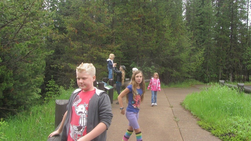 We arrive at Glacier, kids are excited to see a meadow.