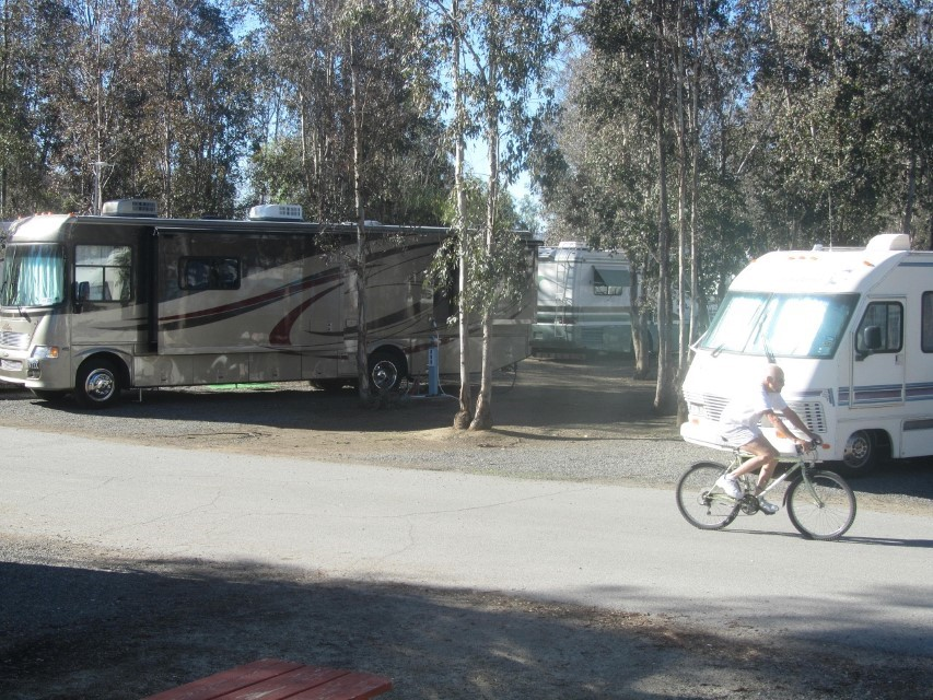We woke up here at Thousand Trails Wilderness Lakes RV resort and saw the sun was out, and thought it would be a great day to see trains.