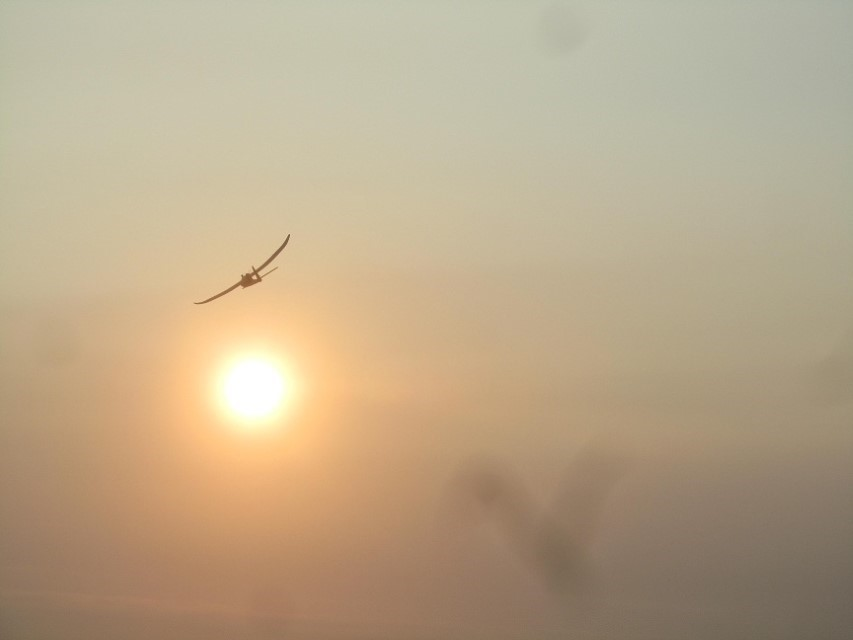 His plane flew off into the sunset
