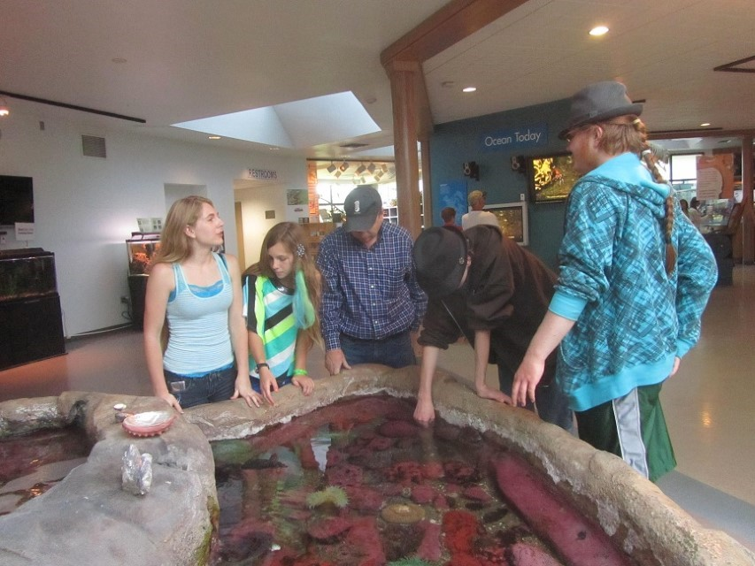 We saw and the touch tank, and began discussing the critters in there.
