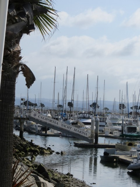 Then again, there is the Chula Vista Marina for those who need a view and solitude that the Imperial Beach Pier cannot provide. Good evening and Good Night….. Wonder where our next blog will take us?