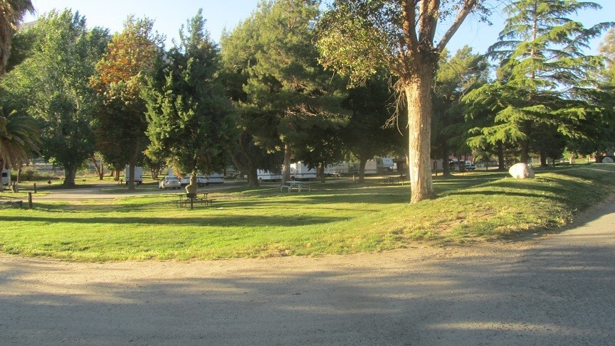 Grassy areas for RV camping
