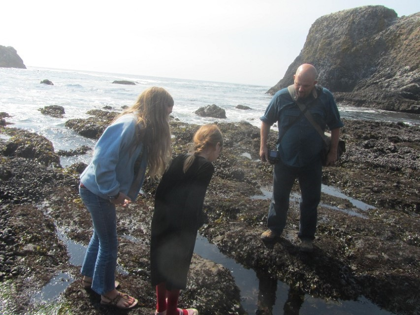 Steve Stone, his daughter and one of mine look at sea stars and purple squish balls.