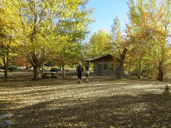 White water has probably 30 stone picnic tables and hundreds of colorful trees.