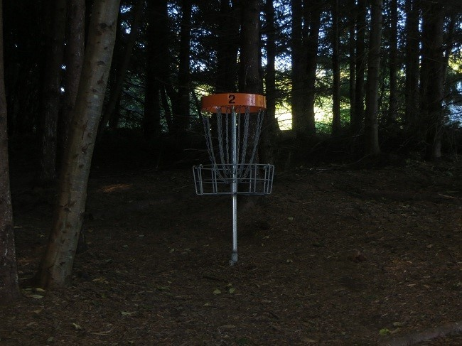 The disc golf though is in the woods. This seems really odd how do you play it in the trees?