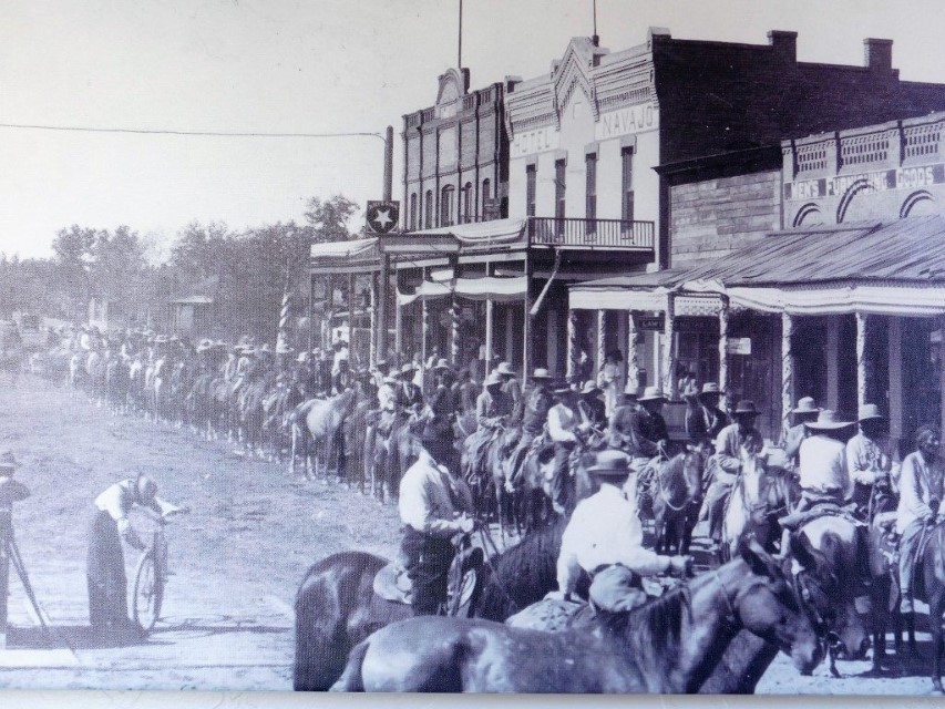 Horses lined up in Winslow