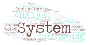 System Analyst Vs IT Professionals