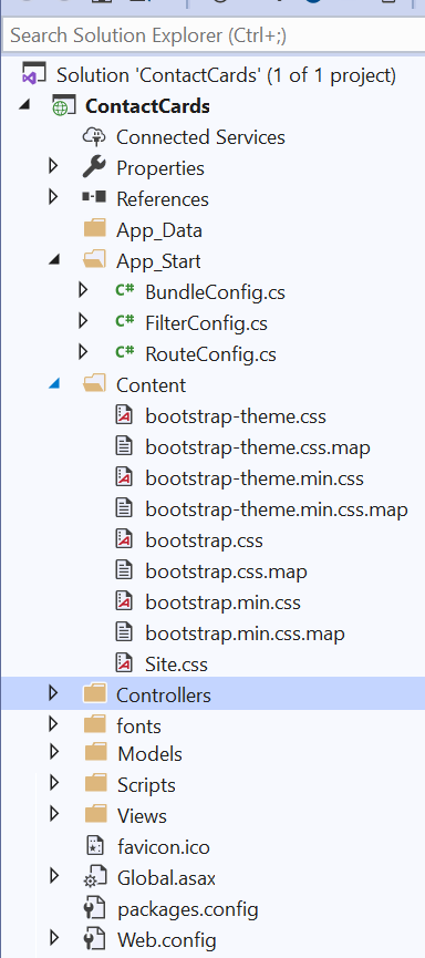 .NET Framework 4.x folder structure