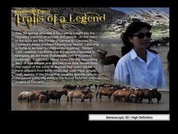 al-caudullo-productions-thailand-thai-ponies-trails-of-a-legend