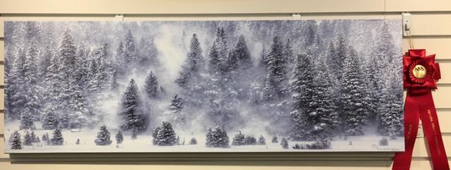 """""""Winter Wonderland"""""""