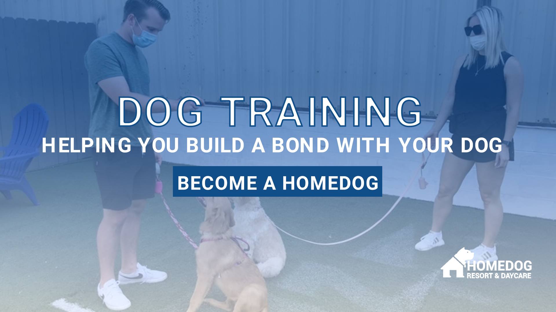 dog training class at Homedog Resort & Daycare in downtown Columbus, Ohio