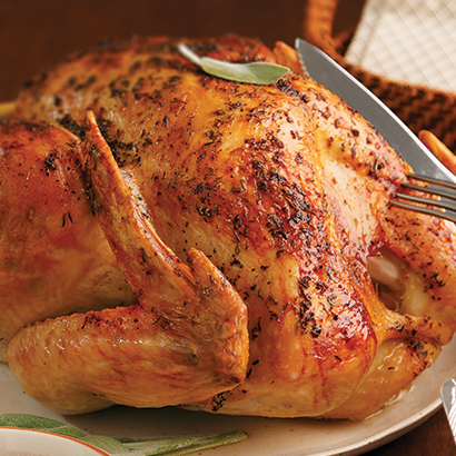 Perfect Portion Roasted Turkey