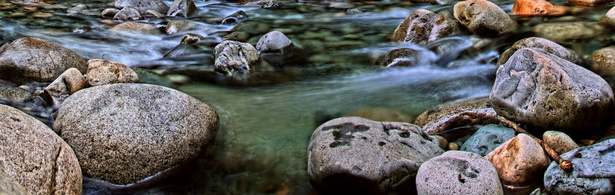 Panorama of a Flowing Alpine Stream