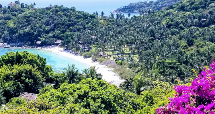 Koh Tao the Best Island in Thailand