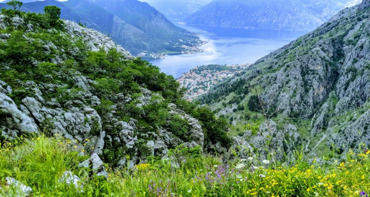 The view of Kotor Bay from the Old Fort Trail