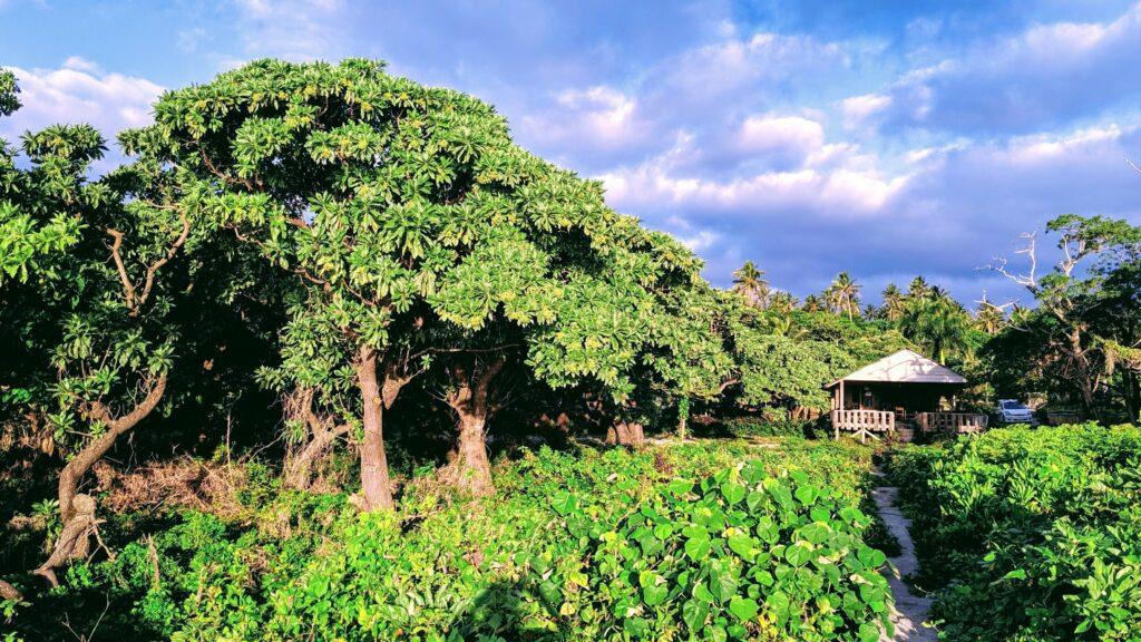 Hideaway Eua Tonga