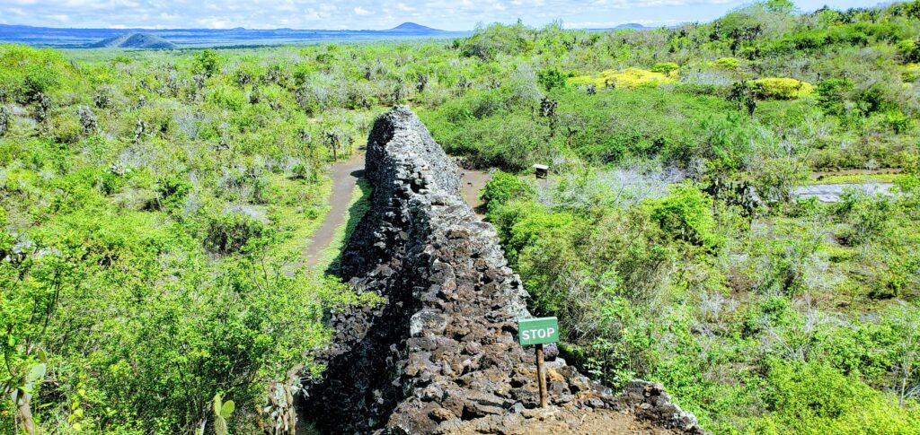 Wall of Tears on Galapagos Isabela island is always on a budget as the attraction is free