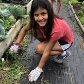 teen volunteering during the summer