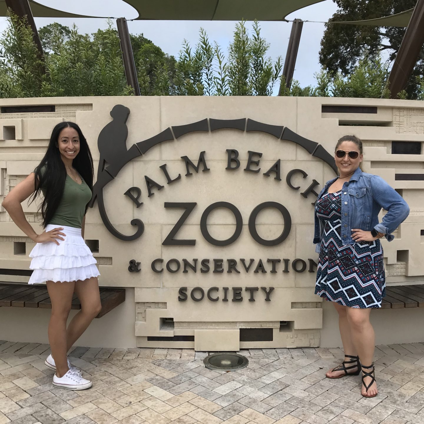 Go Wild At The Palm Beach Zoo
