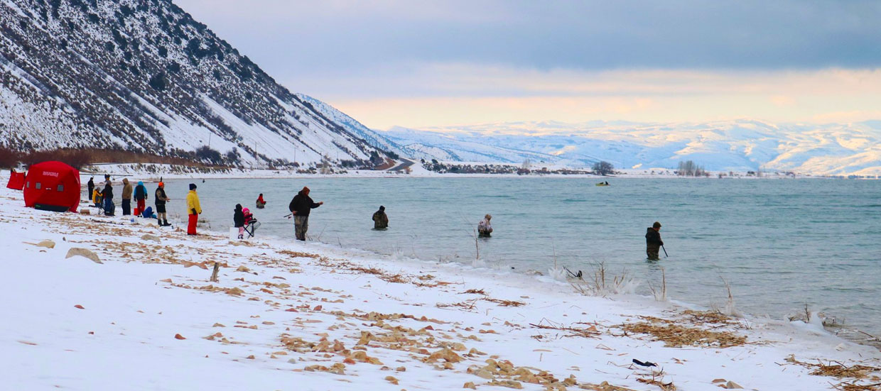 Cisco Fishing at Bear Lake in the Winter