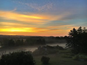 misty summer sunrise in maine