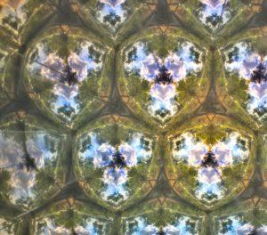 taleidoscope