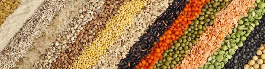 Bandi Whole Grains