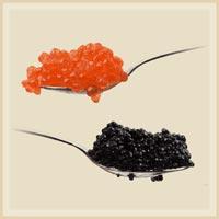 Caviar Fish Roe